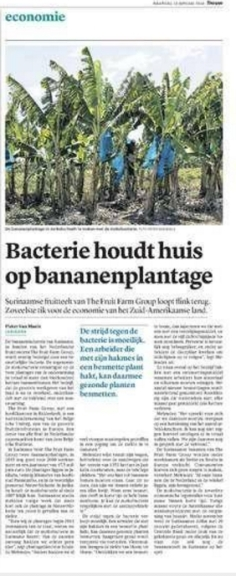 bacterie